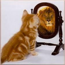Klankbord, spiegelen